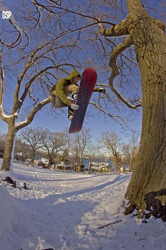 Colin Stale into Tree
