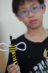 201300526-品儒的蜜蜂-1