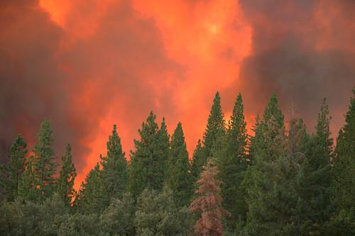 california wild usa fire geoff yosemite quinn geoffrey rimfire