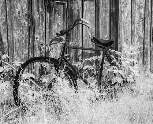old  bike (  explore  )