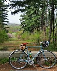 Arboretum ride #30daysofbiking