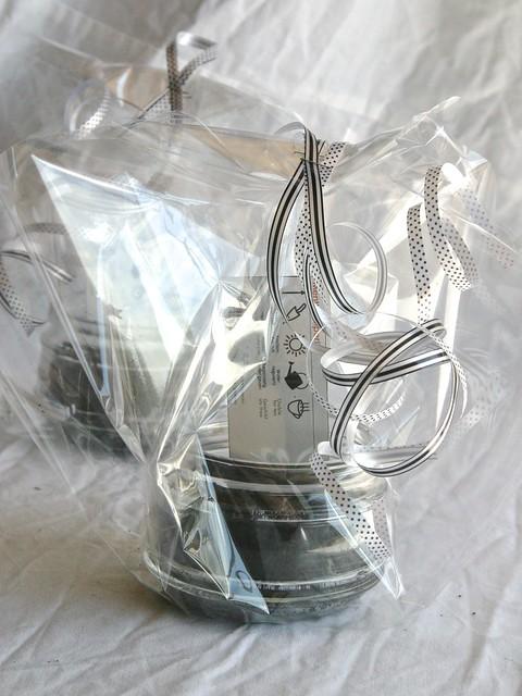 DIY cadeau: mini kruidentuin in een glas ~ CherryCharlie.nl