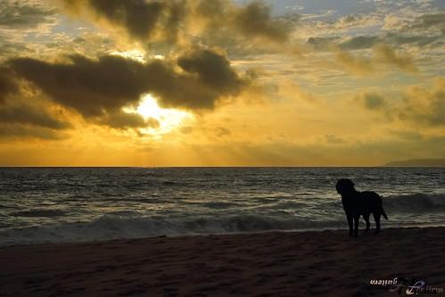 españa sunrise canon atardecer spain gimp cadiz tico zahara zaharadelosatunes atunes canon60d