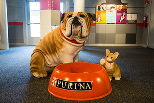 Purina Farms Visitor Center, Better with Pets exhibit | by TaylorStudiosInc