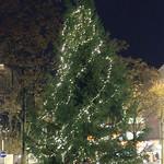 2016_Einweihung Christbaum Beleuchtung