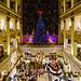 Macy's Holiday Display by Bill Adams