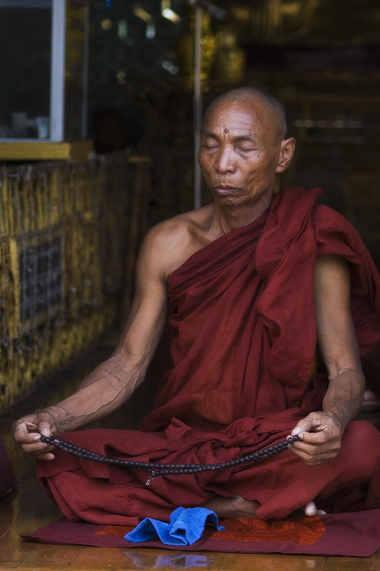 A Burmese Monk In Deep Contemplation