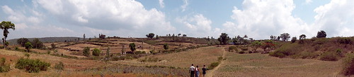 Since the topography is predominantly hilly, terracing becomes essential in order to level the are and make it suitable for practising agriculture