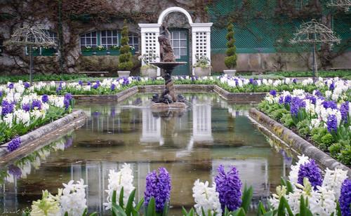 Butchart Gardens - Greater Victoria