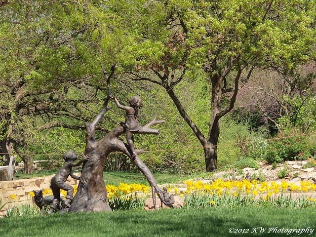 Tulips Flickr Photo Sharing