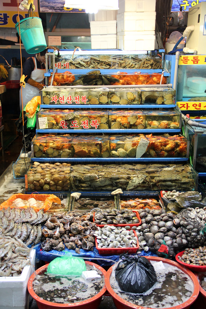 An aquarium of the freshest Korean seafood