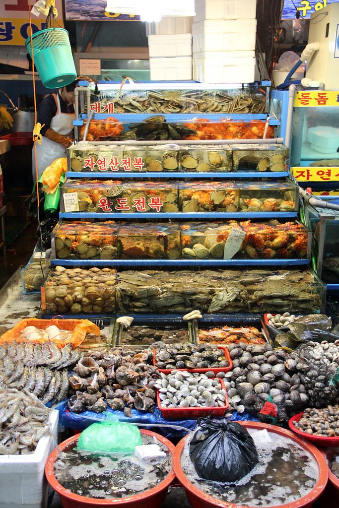 An aquarium of the freshest Korean seafood