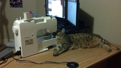 Kitty and the sewing machine