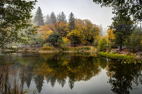 california trees mist lake fog landscape fallcolors idyllwild highdynamicrange lakefulmor sdosremedios size2x3 ©stevendosremedios