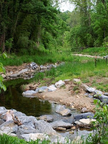 Image of a restored section of Booze Creek