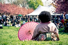 Cherry Blossom Event at Brooklyn Botanical Garden
