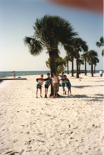 park county family vacation holiday tree pine island coast gulf florida palm 1993 1992 hernando pineisland