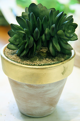 Closeup-of-a-finished-plant
