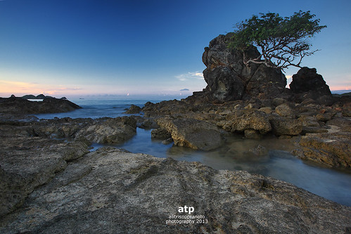 blue sea tree water indonesia rocks nopeople boulders lombok waterflows aftersunrise westnusatenggara nusatenggarabarat alitrisnopranoto