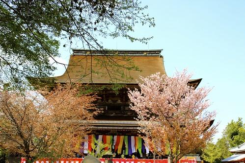 吉野:蔵王堂〜下千本(2013.4.9)