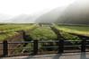 Photo:里山の朝。すでに日差しが強い。 By kayakaya