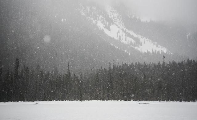 Photo:Heavy Snow By `James Wheeler