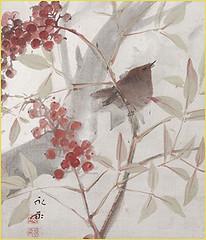 Heavenly bamboo and winter wren