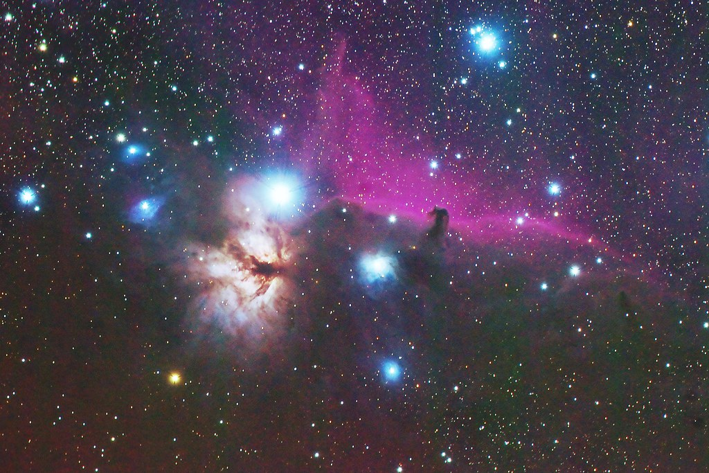 IC434,B33,NGC2024