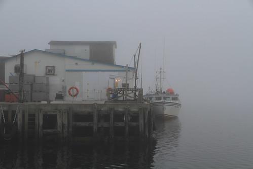 cheticamp morning mist