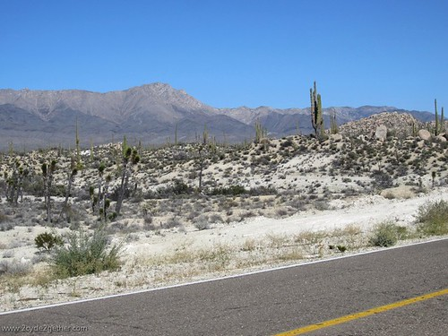 Hwy 1, South of Chapala