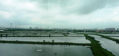 C-Guangzhou-Macao (7)