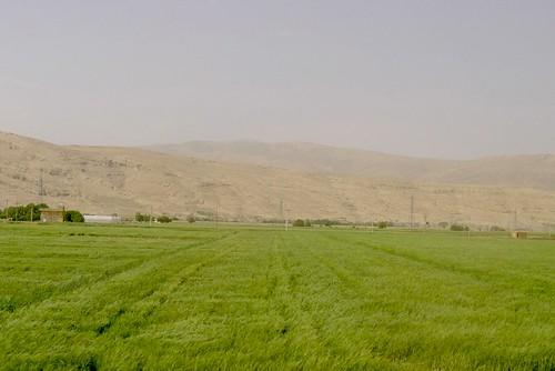 yazd-shiraz-L1030157