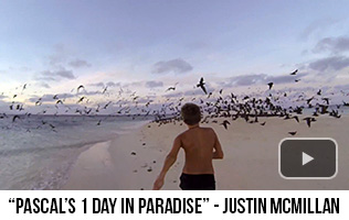 'Pascal's 1 Day In Paradise' - Justin McMillan