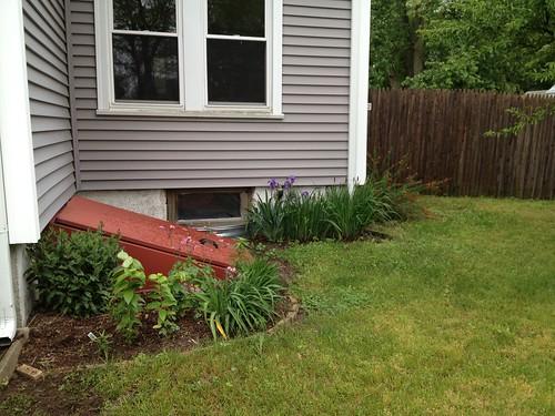 bulkhead and iris garden
