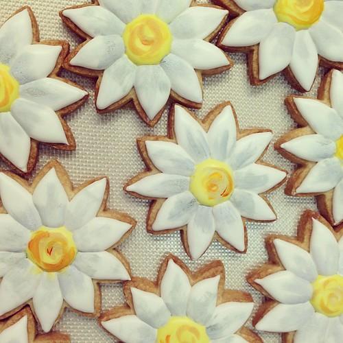 Daisy sugar cookies #polkadotscupcakefactory