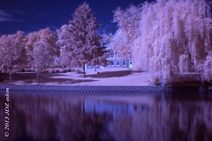 Lords Park..Elgin,Illinois in Infrared