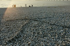 asphalt(0.0), sand(0.0), breakwater(0.0), mudflat(0.0), walkway(0.0), beach(1.0), sea(1.0), wave(1.0), shore(1.0), pebble(1.0), coast(1.0), rock(1.0), gravel(1.0),