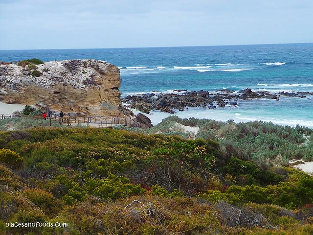 kangaroo island seal bay platform seaview
