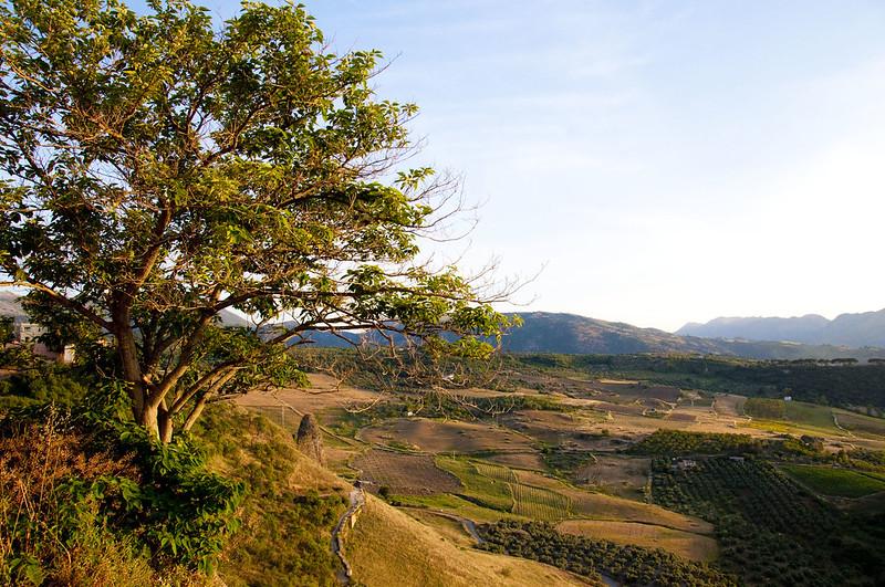 Ronda Spain countryside