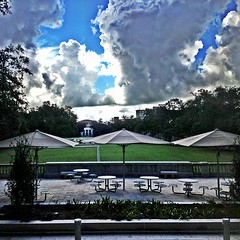 The view across the quads from Newcomb Hall #tulane #onlyattulane