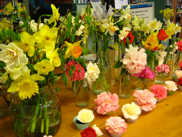 Spring flowers display