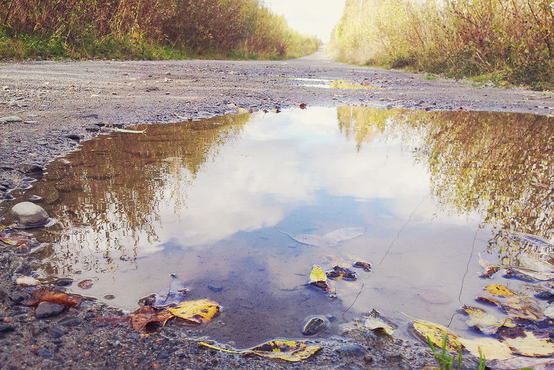 Autumn 2013 - puddle