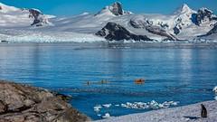 Kayaking @ Penola Strait (Petermann Island) Antarctica