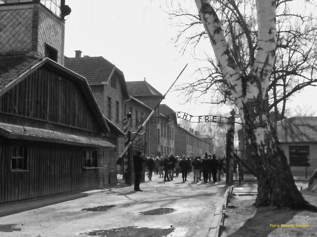 Arbeit macht frei (#Auschwitz)