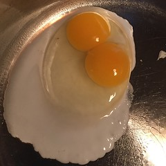 One of our hens just gave us the first double-yolker this year! #fryed365 2015/134/365 #TBay