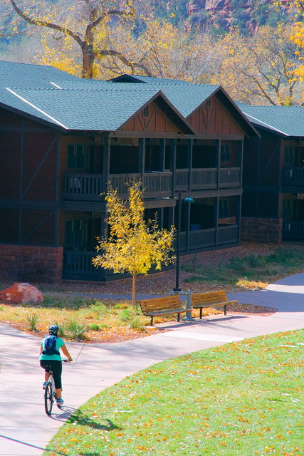 IMG_7115 Zion Lodge
