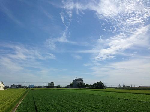 元長鄉、土庫鎮位居全台地層下陷核心。