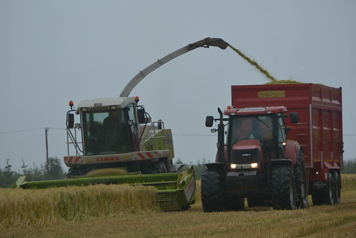 Claas Jaguar 870 SPFH filling a Thorpe Trailer drawn by a Case IH Puma 160 Tractor