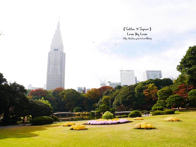日本東京自由行新宿御苑庭園景點 (11)