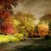 Silent Voice by floralgal